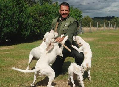 Marc Fraisse, un chasseur sachant chasser avec ses chiens