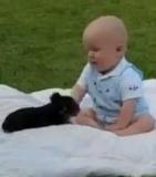 Chiot et bébé : Une belle complicité