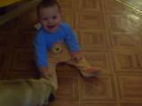 Quand un bébé et un Carlin joue ensemble c'est trop mignon