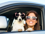 Vacances : emmener ou faire garder son chien ?