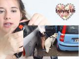Comment bien attacher son chien en voiture