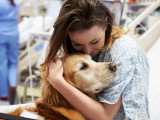 La science le dit : avoir un chien est bon pour le moral !