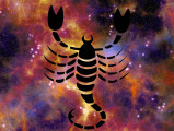 Astrologie canine : Scorpion (24 octobre au 22 novembre)