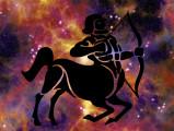 Astrologie canine : le chien Sagittaire (23 novembre - 21 décembre)