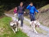 La cani-rando (faire de la randonnée avec son chien)
