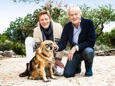 Dave donne de la voix… pour la protection des chiens !