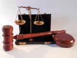 Articles L.216-4 à L.214-8 du code rural et de la pêche maritime relatifs aux animaux de compagnie