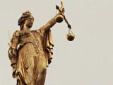 Arrêté du 3 mars 2005 portant création et fixant les conditions de délivrance du brevet professionnel option éducateur canin