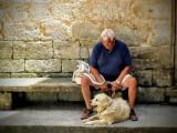 10 races de chiens adaptées pour les personnes âgées / seniors