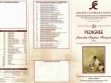 Le Livre des Origines Français (LOF), un registre de référence