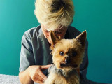 Interview témoignage : le métier d'ostéopathe pour chien