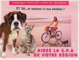 FRANCE - Un autocollant contre l'abandon d'animaux