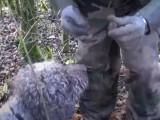 Le chien, le meilleur ami du chasseur de truffes!