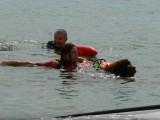 Démonstration de sauvetage en mer avec des Terre Neuve