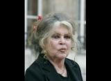 JAPON  Chiens gazés : Brigitte Bardot scandalisée