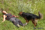 Stage de formation au sauvetage avec chiens
