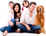 Les races canines préférées des Français