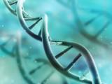 La Génétique à votre Service
