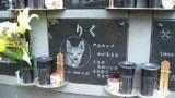 Japon : Un cimetière pour chiens et chats