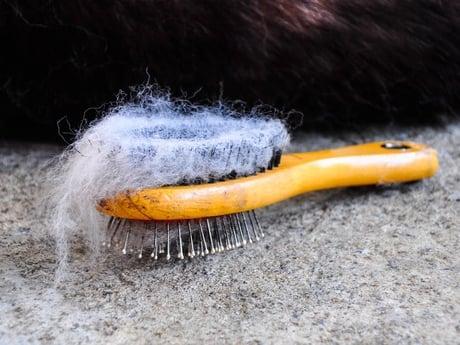 Comment nettoyer une maison comment nettoyer une friteuse - Laver le sol au vinaigre blanc ...