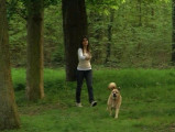 Entretenir la forme de son chien pour l'aider à viellir dans les meilleures conditions