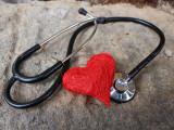 L'insuffisance cardiaque chez le chien : durée de vie, symptômes...