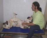 Ostéopathie : point de blocage
