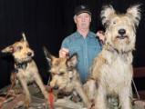 Canada - Salon des éleveurs de chiens pure race