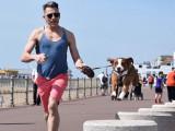 6 raisons de courir avec votre chien