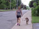 Conseils pour courir avec son chien