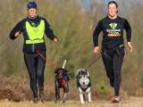 Le canicross, c'est courir avec un chien