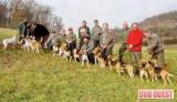 Aquitaine : Des chiens très bien élevés