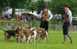 Servon-sur-Vilaine (35) Chasse, vénerie et nature seront en fête dimanche 12 juin -