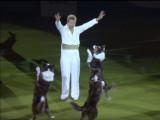 Mary Ray éblouit le public du Crufts avec cette performance d'obérythmée