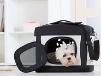 Une cage adaptée à son chien