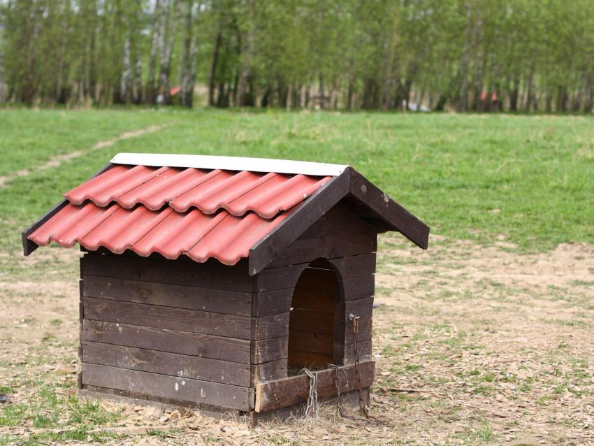 niche pour chien comment la choisir et y installer votre chien. Black Bedroom Furniture Sets. Home Design Ideas