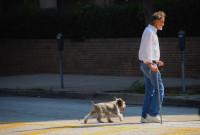Offrir un animal à une personne âgée