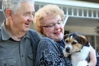 Les premiers jours à la maison, d'un chien adopté en refuge