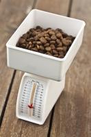 4. Contrôler les quantités alimentaires distribuées au chien