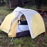 Dormir sous la tente avec un chien : chacun sa place