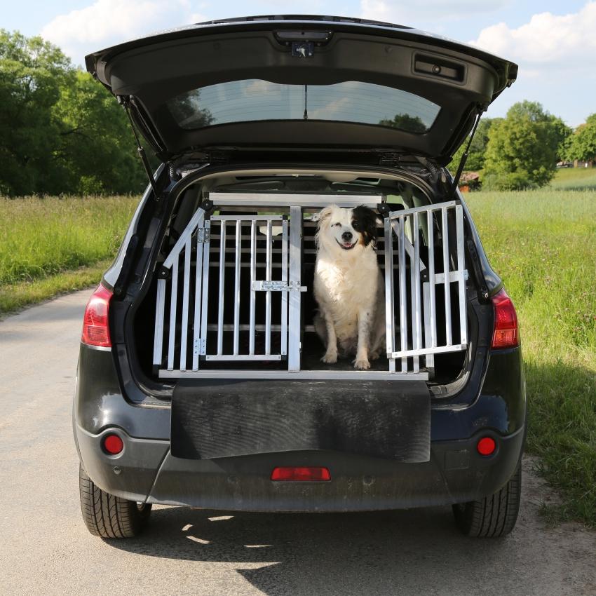 faire voyager son chien en voiture. Black Bedroom Furniture Sets. Home Design Ideas