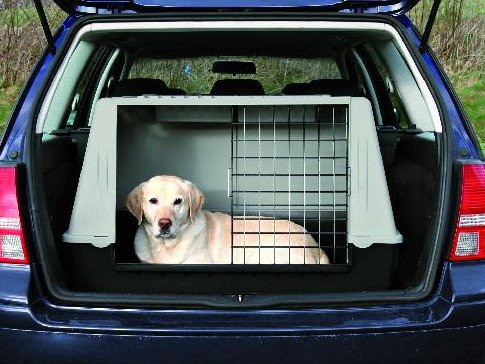 voyager avec son chien en voiture quels quipements. Black Bedroom Furniture Sets. Home Design Ideas