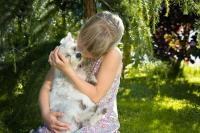 Faire un câlin à son chien