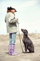 Quelle est la différence entre l'obéissance et la soumission du chien ?