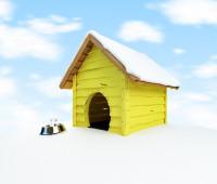 Quand il fait froid, faut-il rentrer la niche du chien, ou investir dans un plaid ?