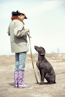 Le conditionnement répondant chez le chien