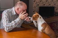 Comment parler à son chien ?