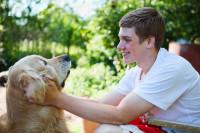 Savoir si un chien aime être touché et caressé