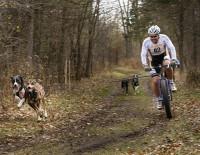 Le Cani-VTT de compétition