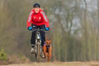Les premières sorties de Cani-VTT avec son chien